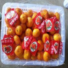 fresh ponkan lugan orange
