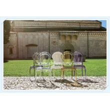 Transparent La Belle Epoque Chair for Home Belle Chair (YC-P32-1)
