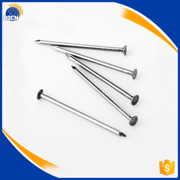 high quality best price common nail with competitive