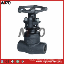Bolt Bonnet Forged Steel Gate Valve (FNPT/SW/BW)