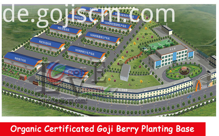 Healthy Goji Food manufacturer
