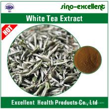 Extracto de té blanco natural