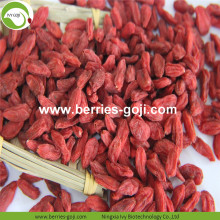 Supply Fruits Torkad High Standard Goji Berry