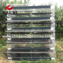 Layer Poultry Quail Cage (Import Export Kenya)