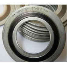 Special Materials Spiral Wound Gaskets of Incone800