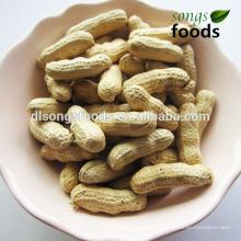 Amendoim de alta qualidade chinês para doces de chocolate