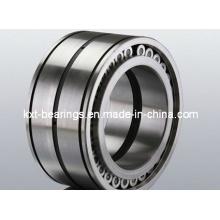 SL045005PP Cylindrical Roller Bearing (SL045006PP SL045010)