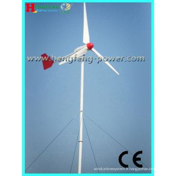 Turbine de vent à axe horizontal 1000W (sans entretien)