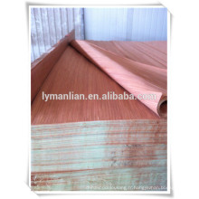 face gurjan fabricant de placage / keruing placage de bois