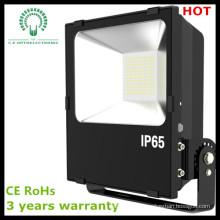 Lumière populaire d'inondation de la plus haute qualité populaire de la conception SMD3030 LED de l'UE