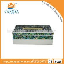 Natural artesanal caixa de tecido de concha de olmo