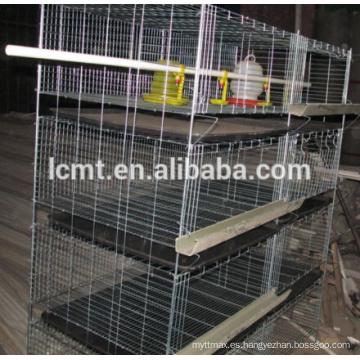 Productos de jaula de pollo de capa tipo H