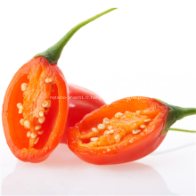 Vitamines Goji Berry Acides Aminés
