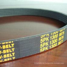Cinturones acanalados de polietileno para automóviles estadounidenses