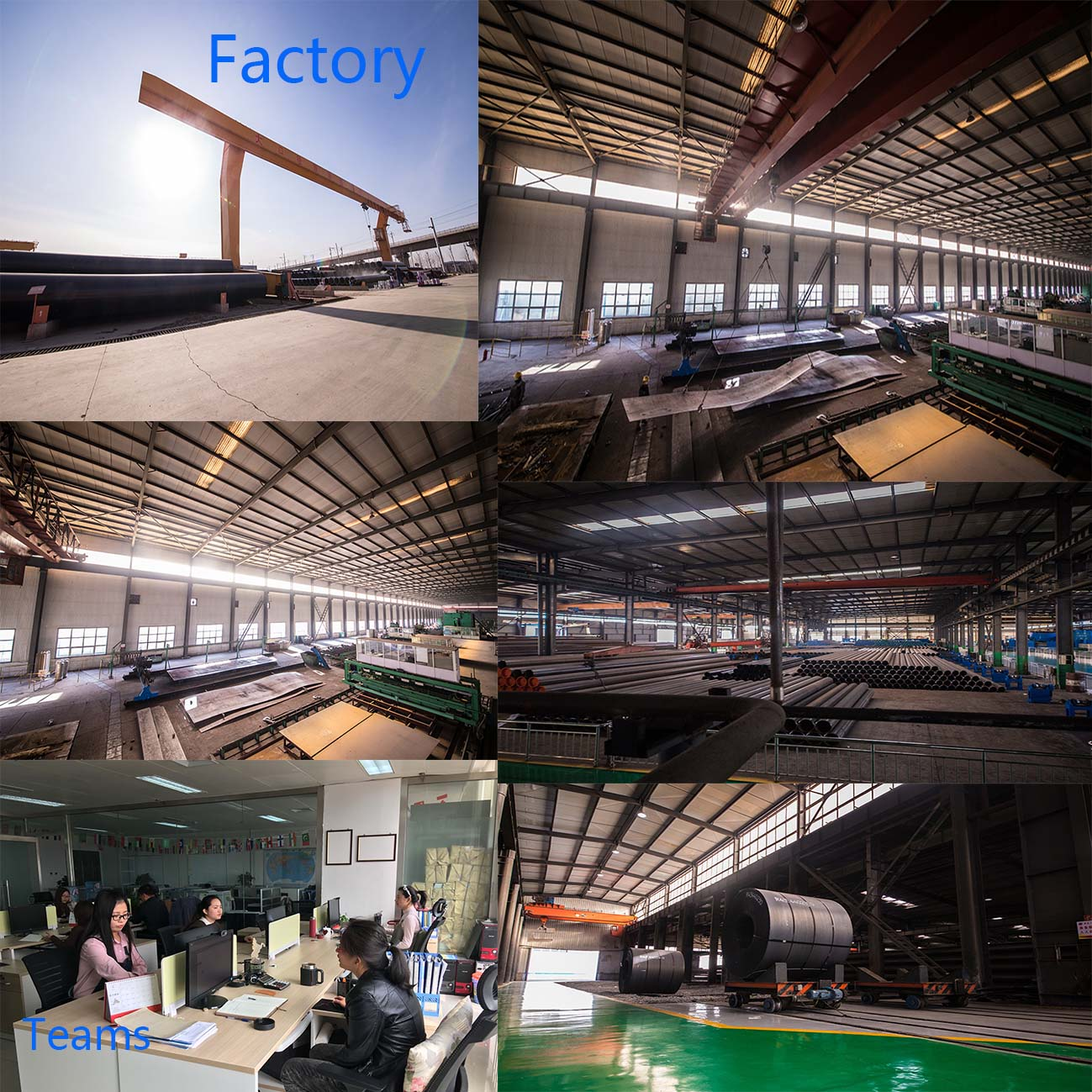 factory and team