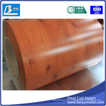 Color Coated Steel Strips Dx51d+Z