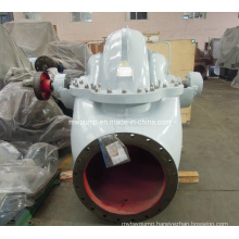Argriculture Intake Water Pump