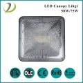 LED Canopy Light Carport Ceiling Light
