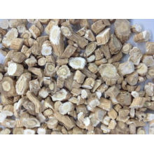 Natural Indigowoad Root Extract Powder for Pharmaceutical