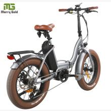 Lithium Battery Folding E Bike/Folding Electric Bike/Mini Bicycle/Foldable Ebike 48V