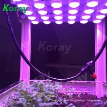 hydroponics plant lamp patent newest design Ra97 high CRI 4 full spectrum adjustable led grow light