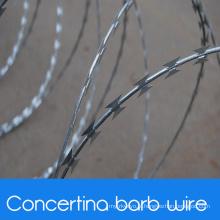Militaire Concertina Barb Wire