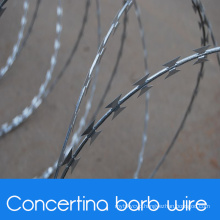 Military Concertina Barb Wire