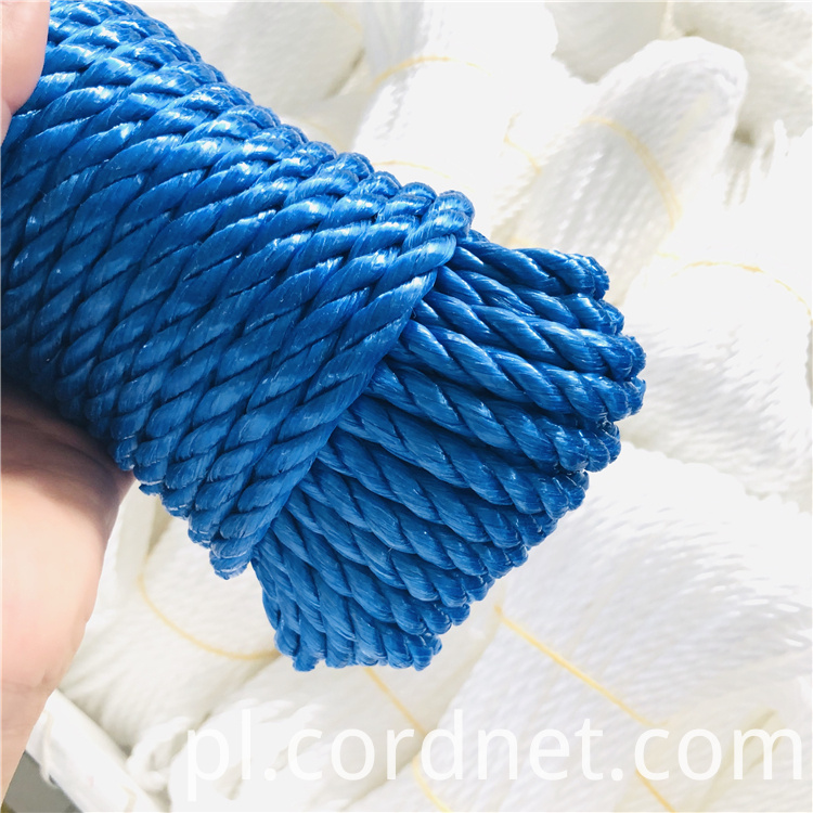 Blue Pp Split Film Rope 2
