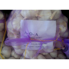 20kg Mesh Bag Packing Garlic (5.0cm)