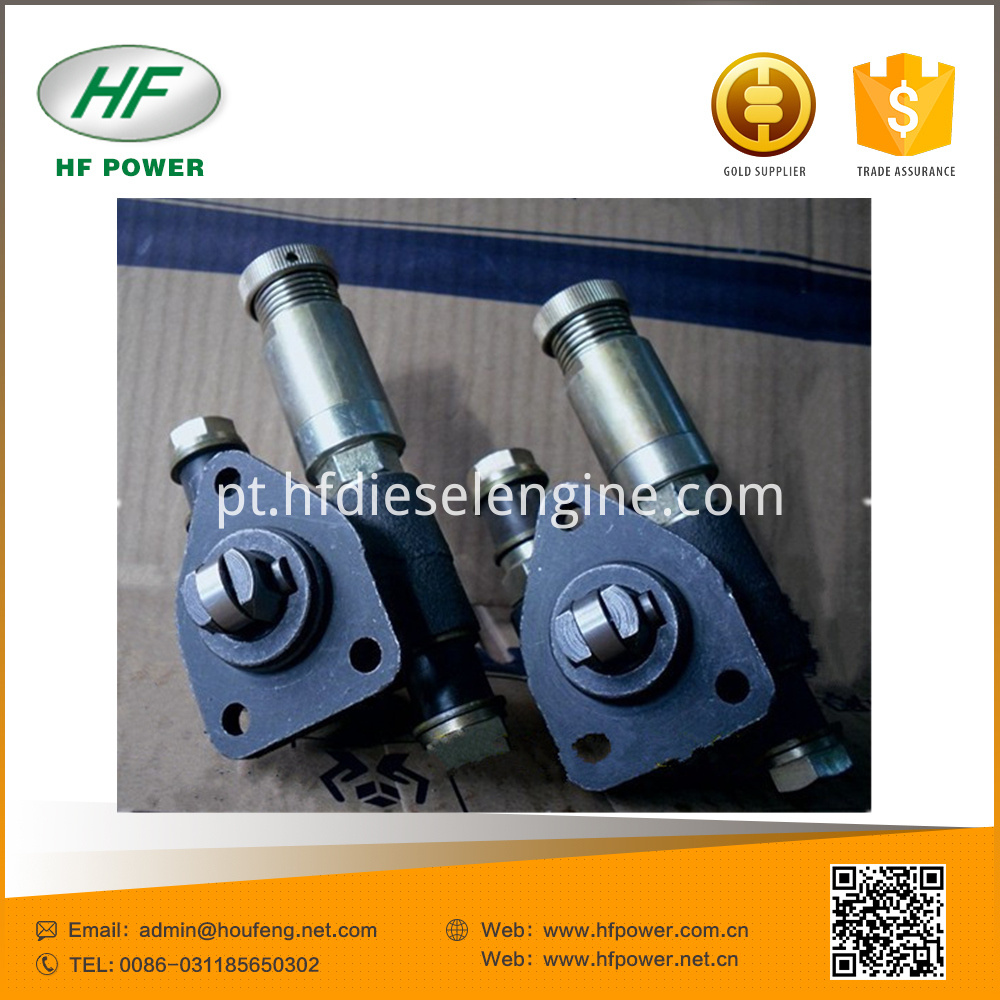 plunger fuel pump (1)