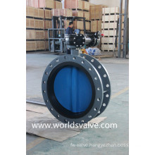 OEM Double Flange Butterfly Valve with Painting Disc