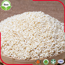 Raw Hulled White Sesame Seeds