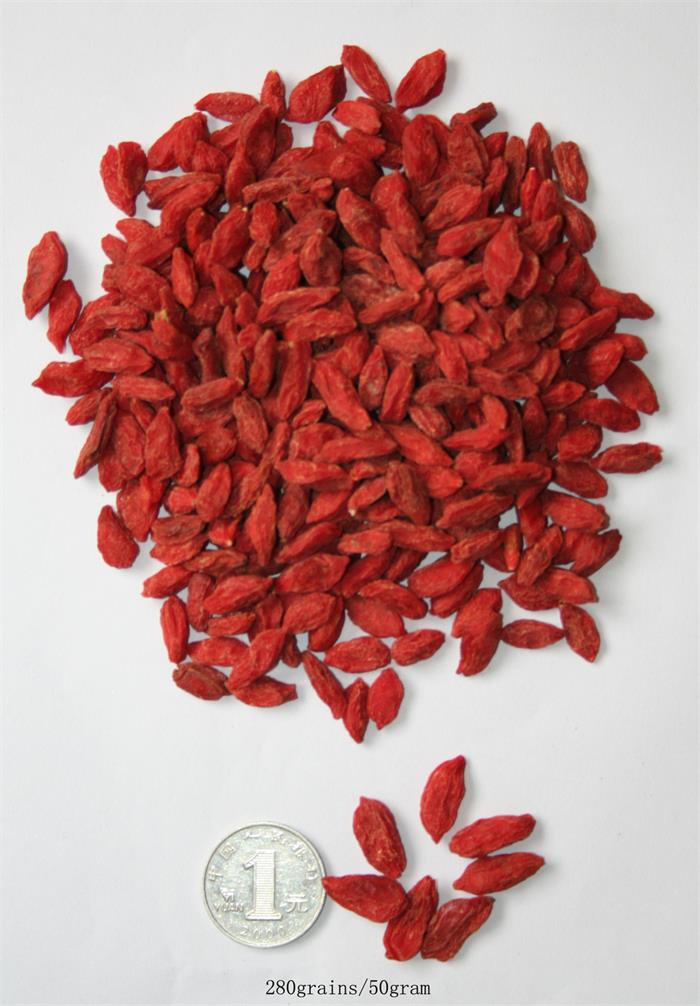 Ningxia New Harvest Food Grade Secado goji berry