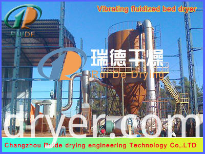 Spray Drying equipment for coconut cream powder