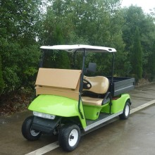 CE Golf Cart 2 Sitze Elektro Golf Auto Club Auto