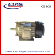 CE SGS 3kw Triple-Phase Air Compressor Motor