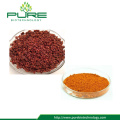 Tribulus Fruit Powder With 90% Saponins