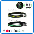 Fancy Surface Led Light Collar For Dog