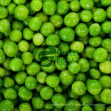 Qualité des légumes pois verts en conserve