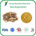 2% ~ 5% Alcaloïdes Uncaria rhynchophylla gou teng extrait