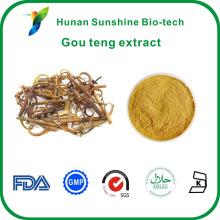 2% ~ 5% Alkaloide Uncaria rhynchophylla gou teng Extrakt
