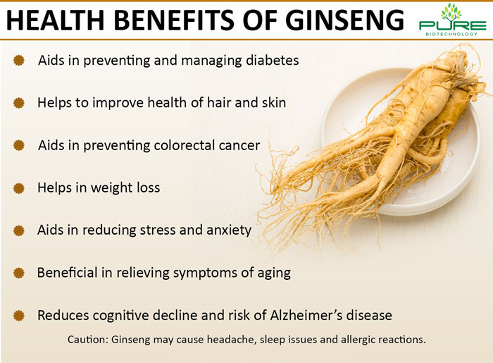 Natural Dried Red Panax Ginseng Root (6)