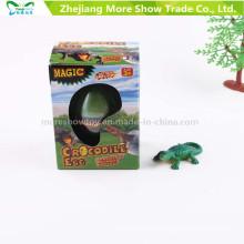 Magia Educacional Crescendo Ovos Expansão Ovo De Dinossauro Brinquedos Ovos De Cobra