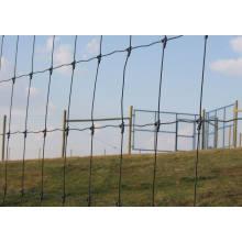 Heißer eingetauchter galvanisierter Vieh-Zaun