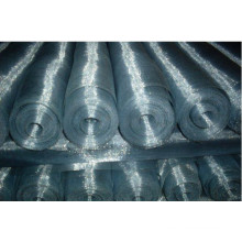 Electro Galvanized Wire Netting for Window Screen