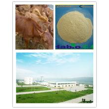 Enzyme pour les bovins (additif alimentaire)