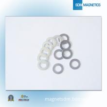Permanent NdFeB Motor Ring China Magnet