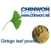 Pólvora pura y natural de la hoja del Biloba del Ginkgo del 100%
