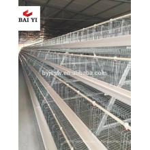Cage de poulet / poulet ferme / cage de poulet à vendre pour tout le monde