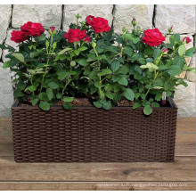(BC-F1036) Rattan en plastique New Design Square Self-Watering Flower Pot